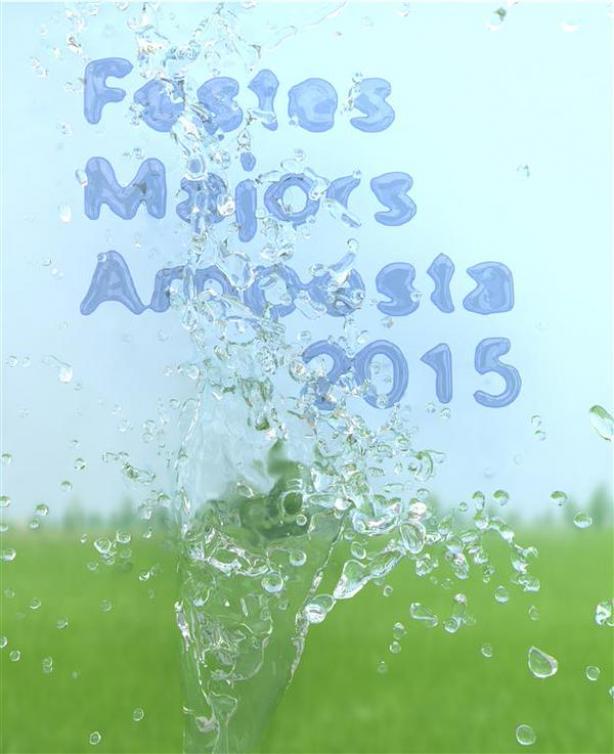 Festes Majors Amposta 2015